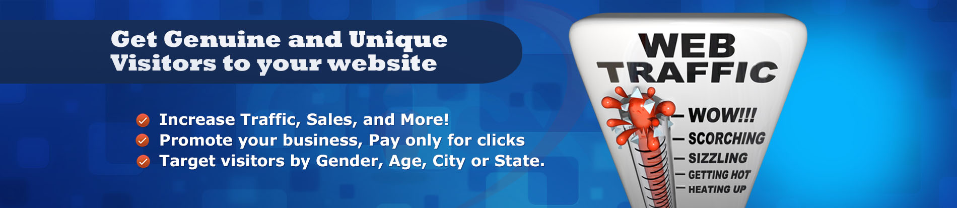 What Does Buy Website Traffic Online Do?